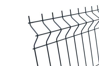 3D plotový dílec, výška 123 cm, šířka 250 cm, antracit, PREMIUM (oko 50x200 mm; drát 5,0 mm) - 3